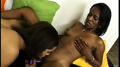 Gorgeous black sluts make each other moan with a huge strap-on