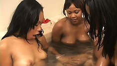 Voluptuous ebony hotties have some fun with a strap-on in a jacuzzi