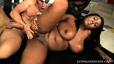 Stacked black girl has her white personal trainer satisfying her sexual desires
